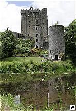 irlandia_stat_7