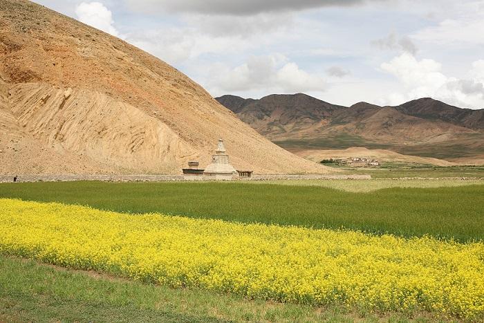 tibet_0816_11