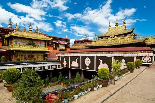 tibet-programma-2017-17