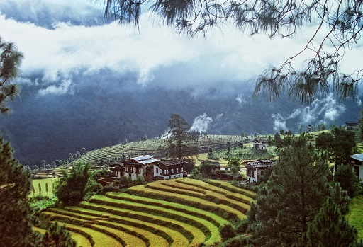 I spent about 3 weeks traveling across Bhutan, a small Buddhist country nestled at the foothills of the Himalayas. In the fertile valleys, layers upon layers of rice terraces paint the hillsides.