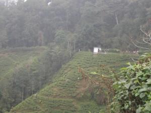 sikkim-otchet-2017-2