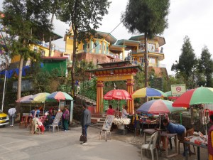 sikkim-otchet-2017-30