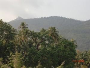 india-otchet-2010-site-78