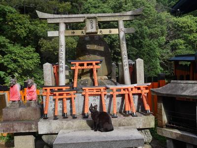 japan-tur-may-2018-46