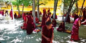 oychet-tibet-june-2019-6