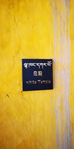 oychet-tibet-june-2019-77