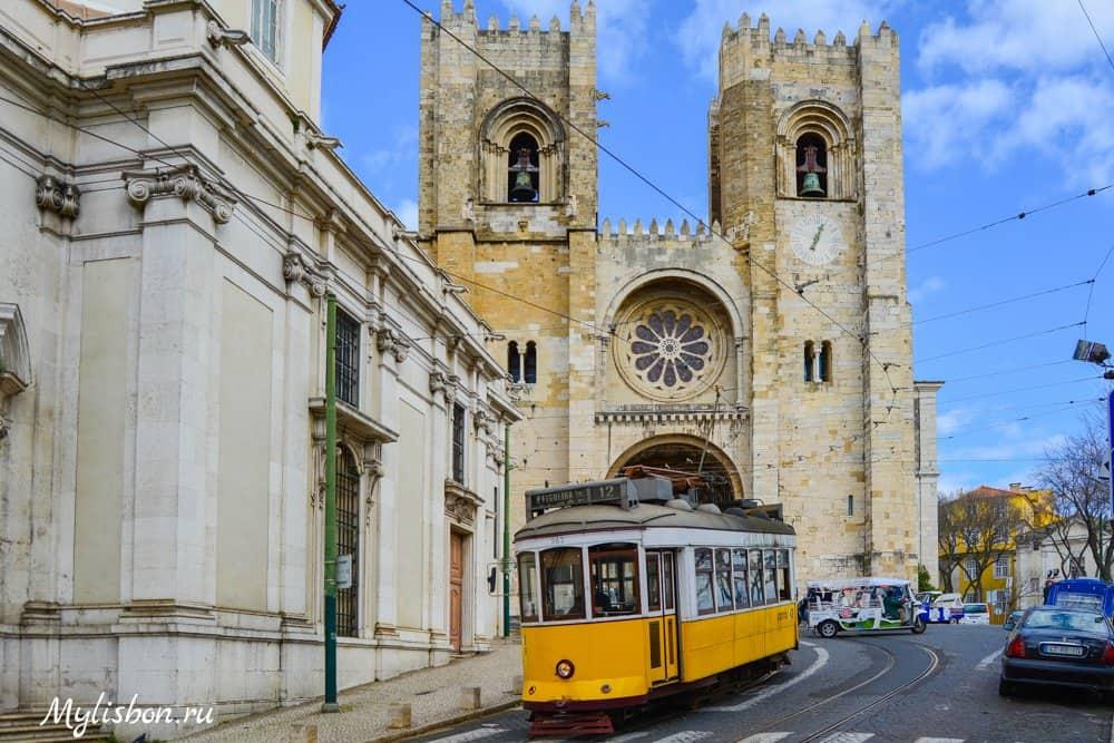 portug-isp-jab-2021-7