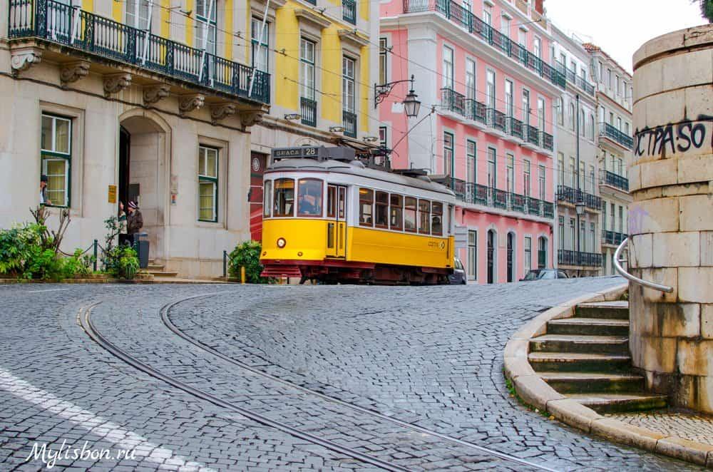 portug-isp-jab-2021-9