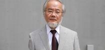 Нобелевская премия по физиологии и медицине присуждена Есинори Осуми