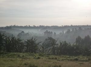 Уганда-Руанда