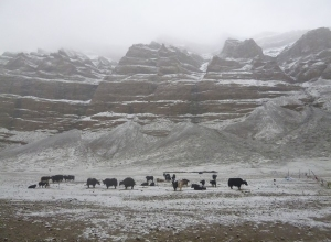 Тибет июнь 2015