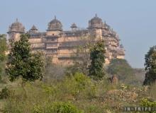Отчет о поездке в Индию. Апрель 2019 года